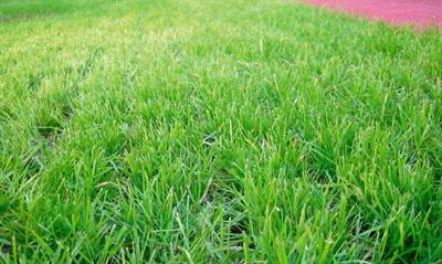 Safety tiles with reinforcement